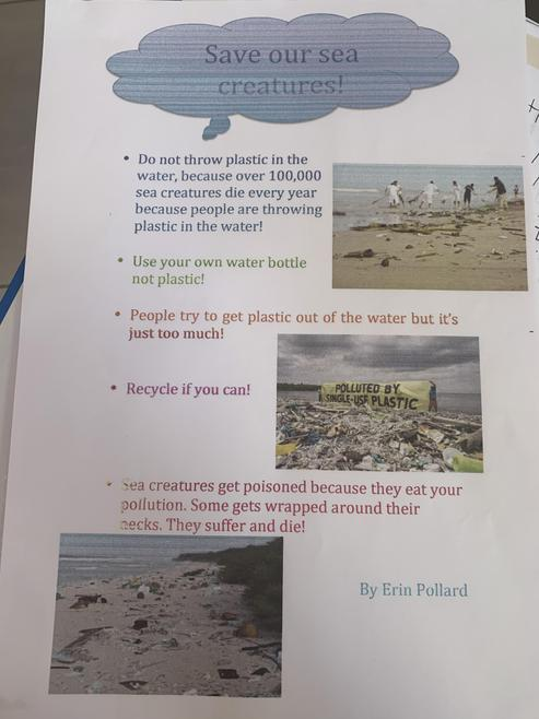 Erin's Pollution Poster