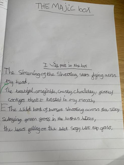 Erin's Poem