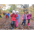 We used mirrors to walk through the forest to see what it would be like if we were birds.