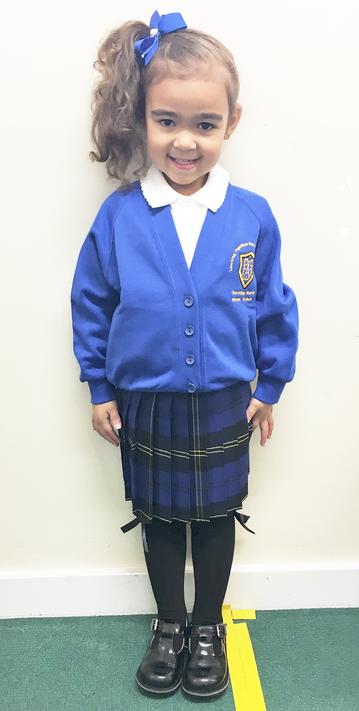 Brand New Tartan Skirt