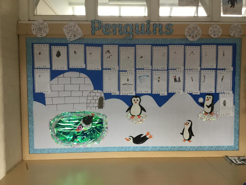 Year 1 penguins