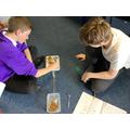 Science: Darwin's finch investigation