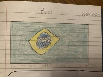 Sophie's Brazilian flag