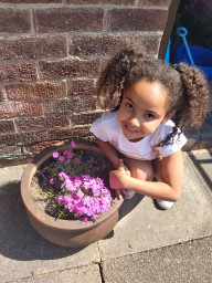 Planting some beautiful flowers