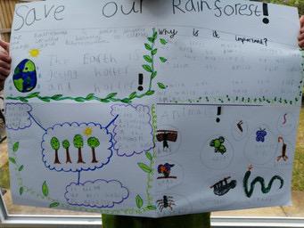 Rainforest poster- close up!!