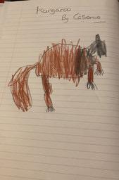 A kangaroo by Catherine