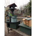 Bird feeder, bird boxes and hedgehog house