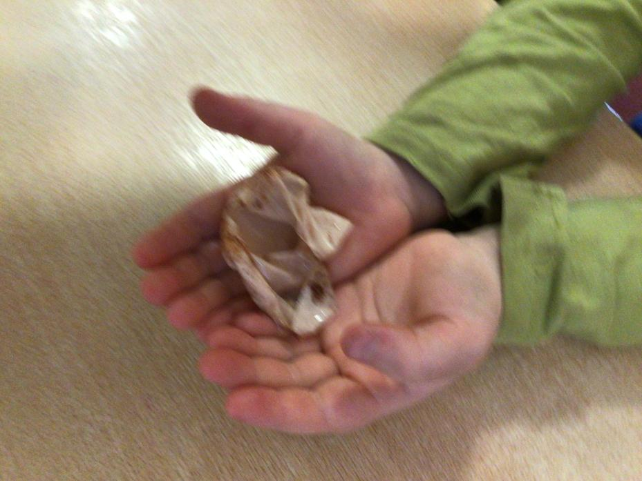 The vinegar DISSOLVED the shell!