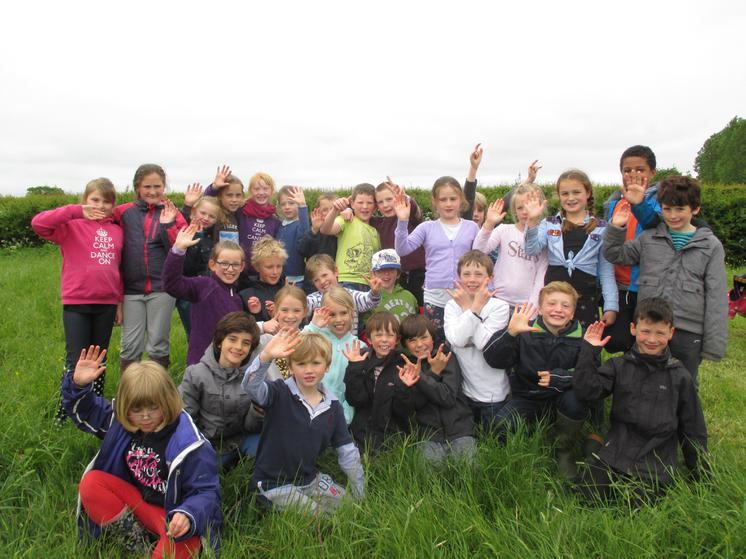 Trip to Meadow Farm