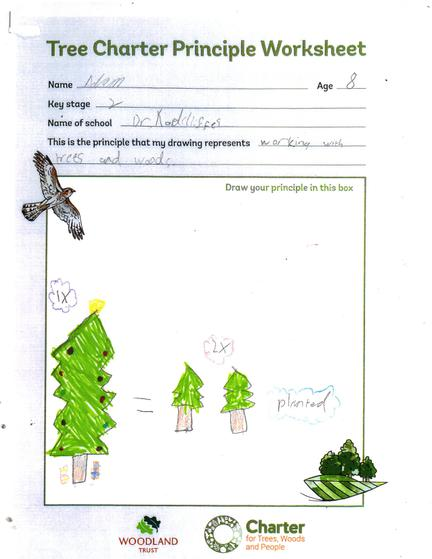 Working with trees