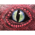 Year 5 Malamander Eye - oil pastel and water colour