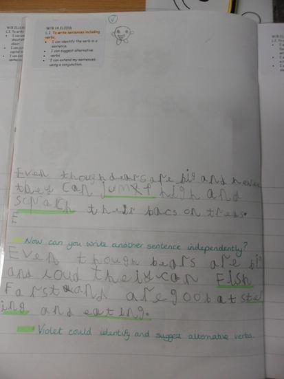 Look at this beautiful handwriting.