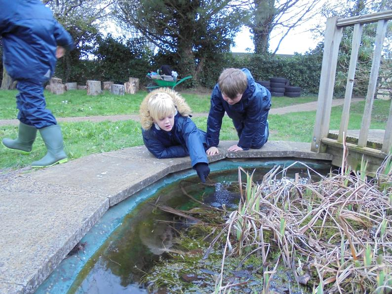 Checking on the frogs spawn