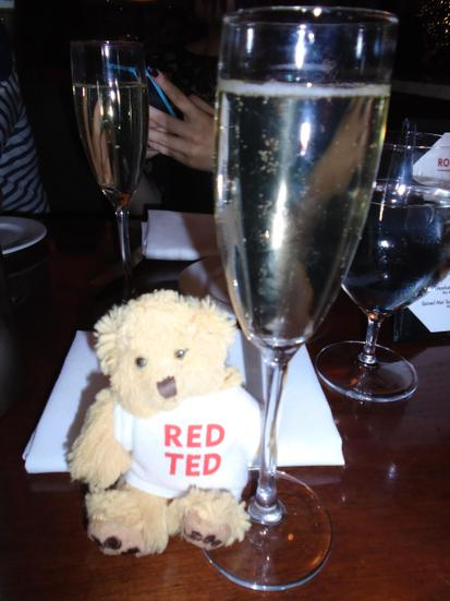 Red ted! Are you old enough to drink this?