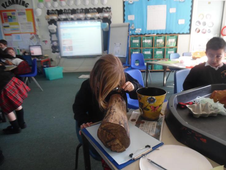 Exploring different materials