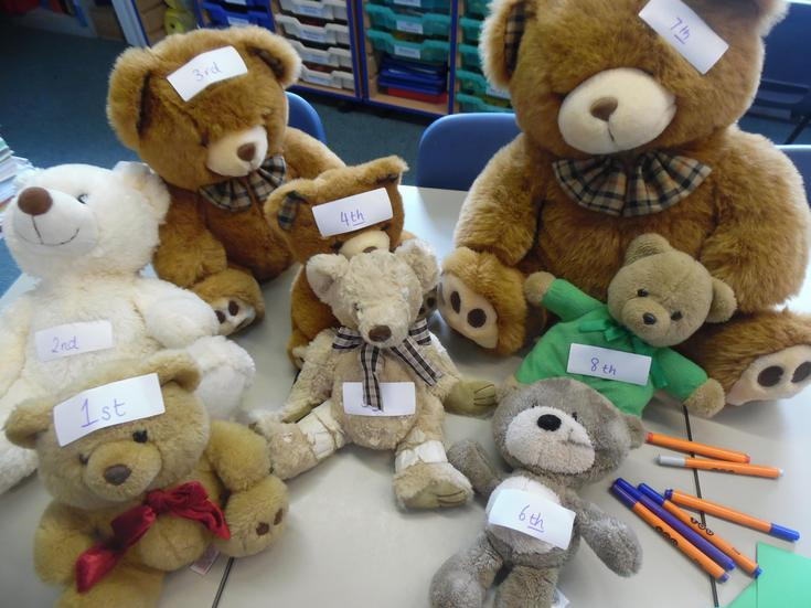 Can you order the teddies correctly?