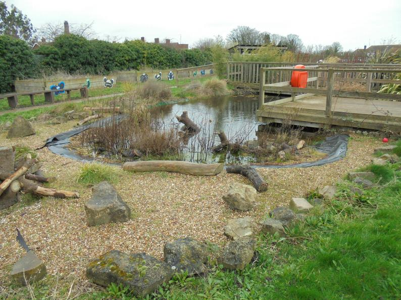 Our large pond