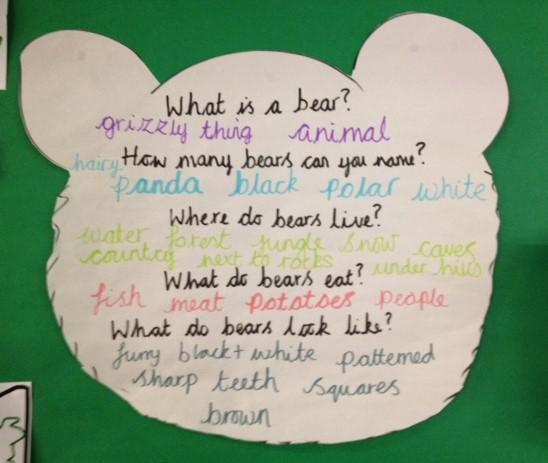 This is our starting knowledge on bears.