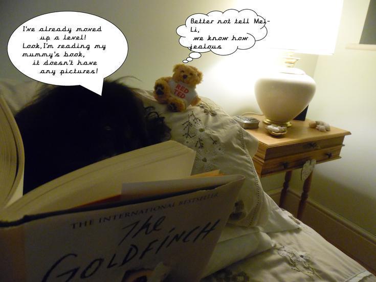 Mr Jones loves his bedtime story now!