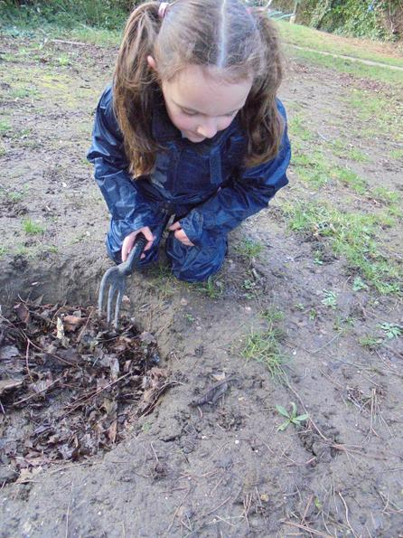 Exploring the mud hole