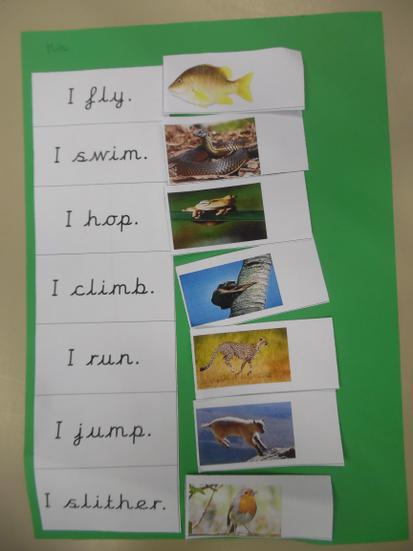 Can you find the matching picture for each verb?