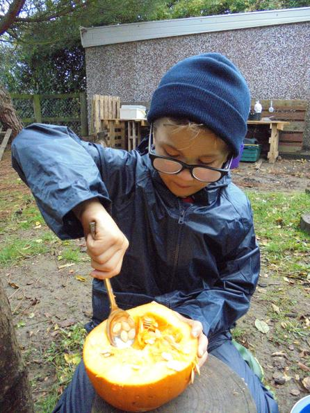 Scooping out the pumpkin