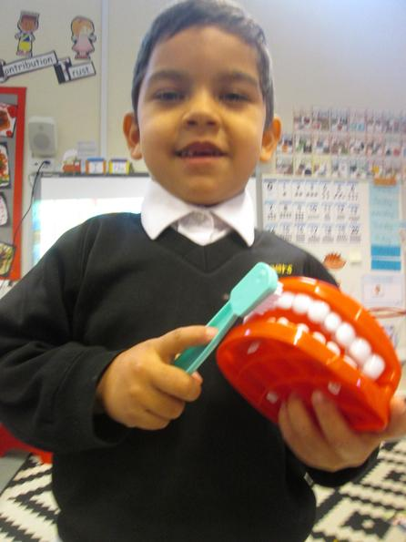 Learning to look after our teeth