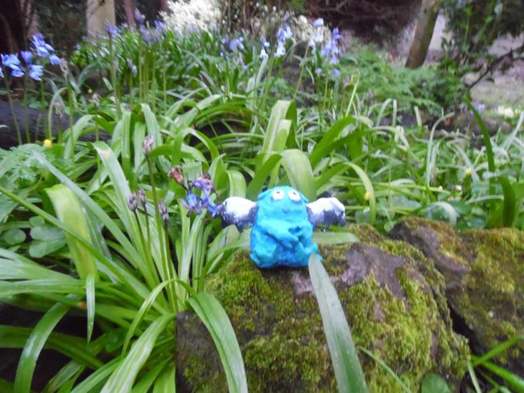 Bog Baby in Mrs Baker's Bluebell wood