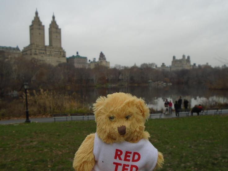 Can you guess where Red Ted is yet?