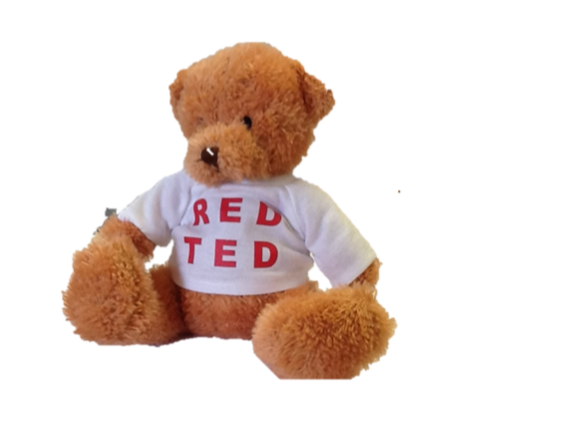 Hi I am RED TED. I can't wait to meet you!