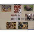 Can you design a new animal print? bring it in!