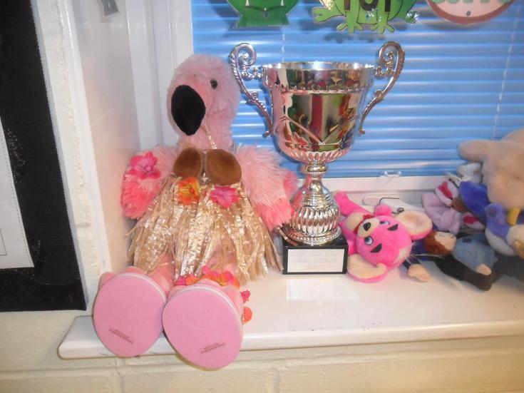Julia is very proud of her Flamingos!