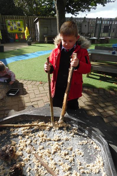 Exploring oat flakes