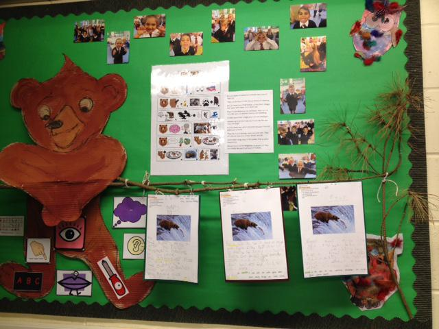 We have been writing facts about bears.