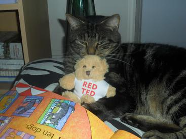 Dirk & RED TED snuggle up to read 'One is a Snail'