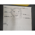Today the older children labelled each body part.