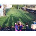 Finding out about shadows!