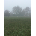We went out to play in the fog.