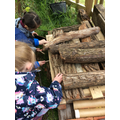 Adding to our bug hotel.