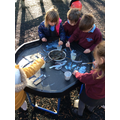 Creating a picture of nocturnal animals in the forest