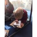 Writing lists of jungle animals