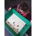 We rolled the conkers in paint to create art work