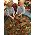 Creating our own stories using the jungle animals