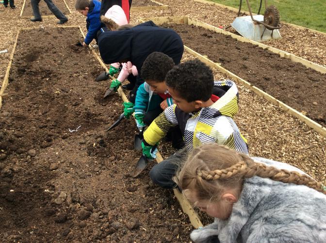 We love gardening!