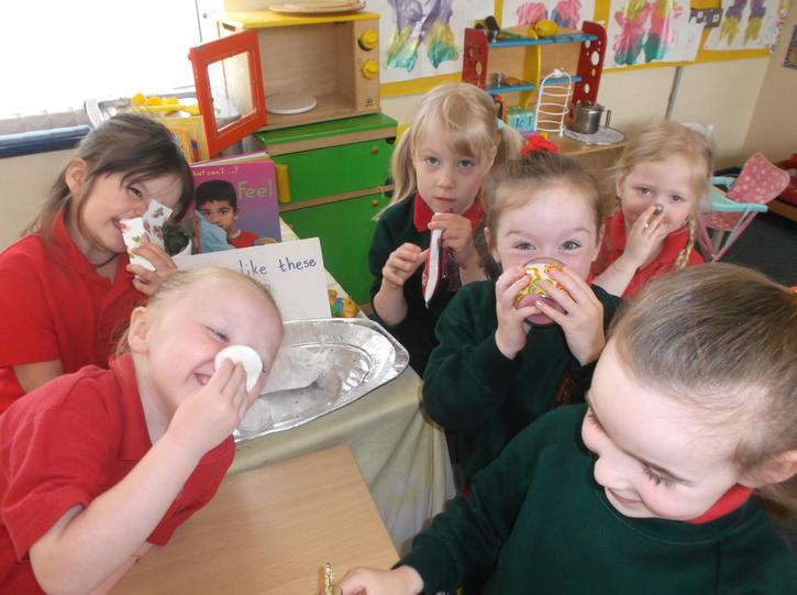 using our nose to smell different scents