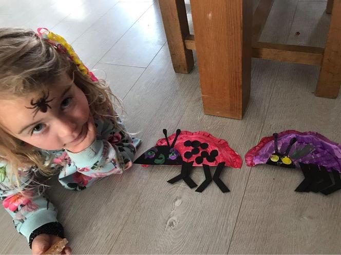 Emi's fantastic paper plate bugs