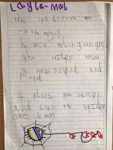 Layla-Mai's Spider story