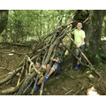Amazing Den Building