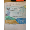 Oliver's water cycle.