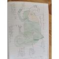 Gabriel's chameleon
